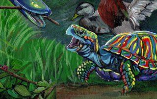 The Tortoise and the Ducks by Amanda Zirzow