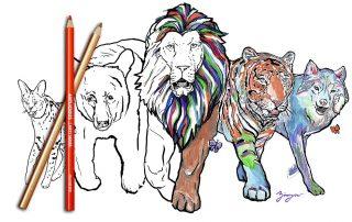 Octagon Wildlife Sanctuary Coloring Book by Amanda Zirzow