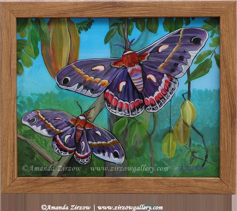 The Cecropia Moths Original Painting